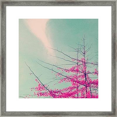 This Is The Remix Framed Print by Courtney Haile