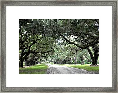 This Is The South Framed Print