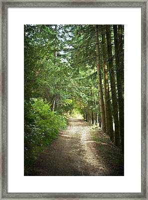 This Is The Way Walk In It Framed Print by Georgia Fowler