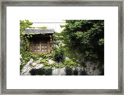 This Side Of The Window In Colour Framed Print