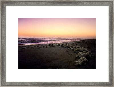 This Summer I Went Swimming Framed Print