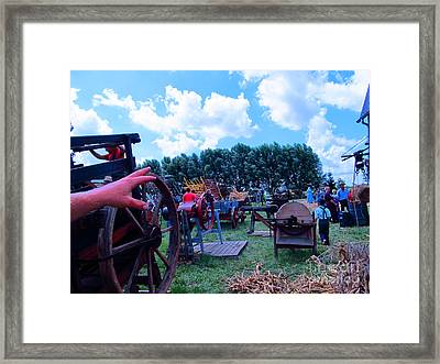 This Way To Hay Framed Print