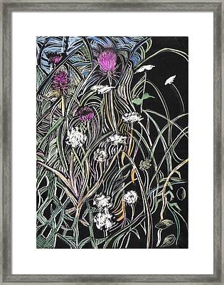 Framed Print featuring the drawing Thistle And Queen Anne by Grace Keown