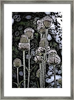 Framed Print featuring the digital art Thistle  by David Lane