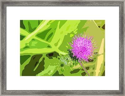 Thistle Framed Print by Nancy Merkle