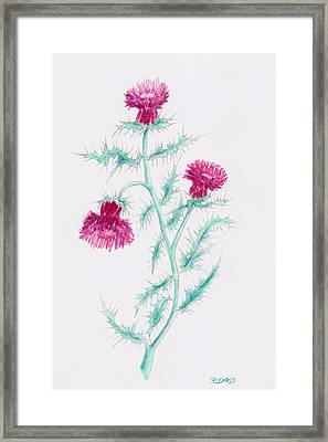 Framed Print featuring the painting Thistle by Rebecca Davis