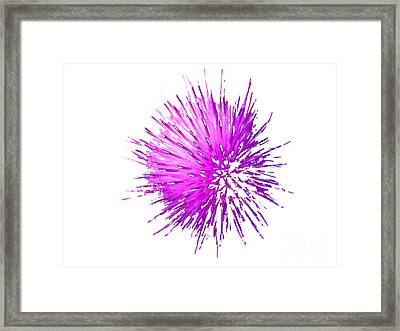 Pow  Framed Print by Rich Collins