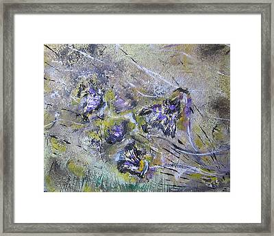 Thistles In The Mist Framed Print by Lucy Matta