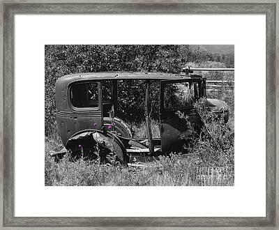 Thistles Framed Print by Janice Westerberg