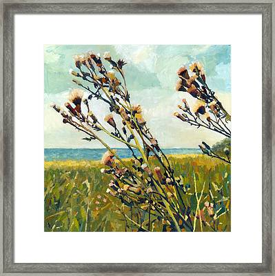 Thistles On The Beach - Oil Framed Print by Michelle Calkins