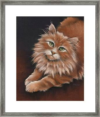 Framed Print featuring the drawing Thomas by Cynthia House