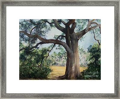 Thomasville Oak Framed Print by Mary Lynne Powers