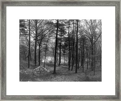 Thoreau Walden Pond Framed Print