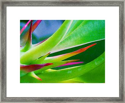 Thorn In Your Side Framed Print by Rebecca Flaig