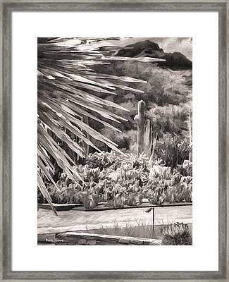 Thorns Of Glass  Bw Framed Print