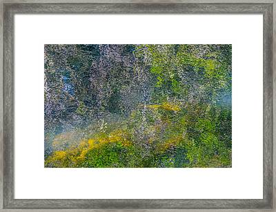 Thornton's Canvas Framed Print by Roxy Hurtubise