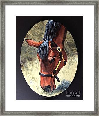 Thoroughbred Head Framed Print
