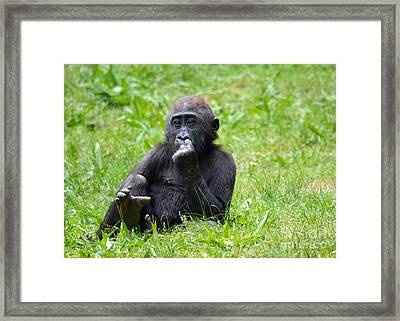Framed Print featuring the photograph Thoughts by Lisa L Silva