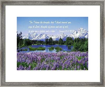 Thoughts Of Peace Framed Print