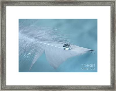 Thoughts Of Yesterday Framed Print