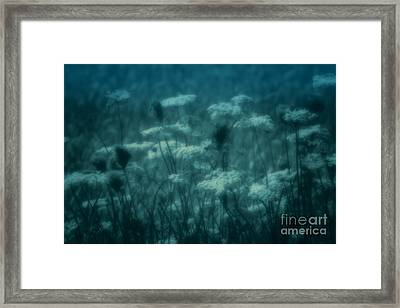 Thoughts Of Yesteryear  Framed Print