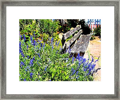 Thoughts On The Weathered Bench Framed Print by Pamela Hyde Wilson