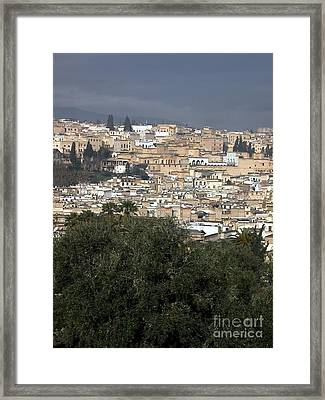 Thousand Years Old Framed Print by Sophie Vigneault