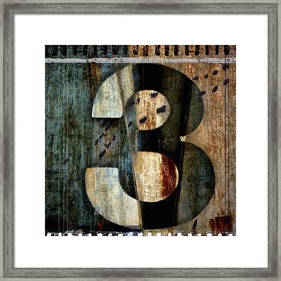 Three Along The Way Framed Print by Carol Leigh