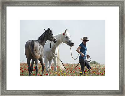 Three At The Poppies' Field... 1 Framed Print