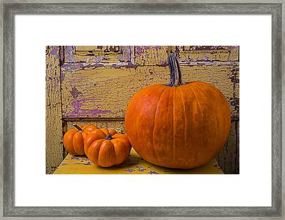 Three Autumn Pumpkins Framed Print by Garry Gay