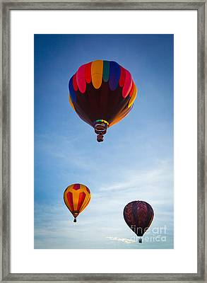 Three Balloons Framed Print by Inge Johnsson