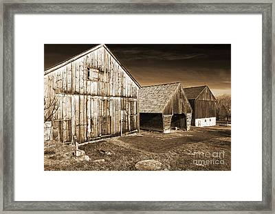 Three Barns Framed Print by John Rizzuto