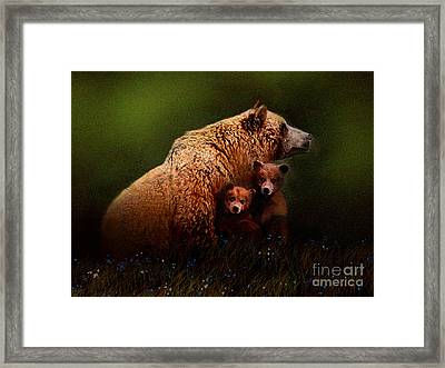 Three Bears Framed Print by Robert Foster