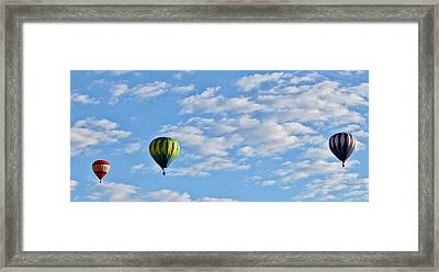 Three Beautiful Balloons In Cortez Framed Print