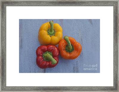 Three Bell Peppers Framed Print by Vishwanath Bhat