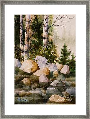 Three Birch By Rocky Stream Framed Print by Teresa Ascone