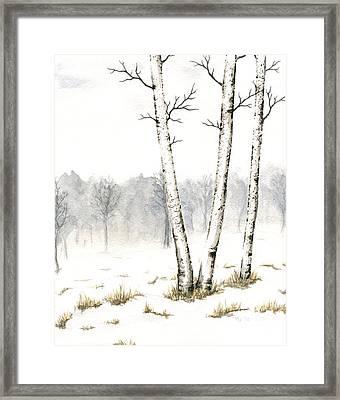 Three Birches In Late Winter Framed Print by Anna Bronwyn Foley