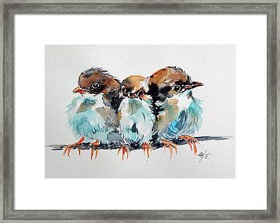 Three Birds Framed Print by Kovacs Anna Brigitta
