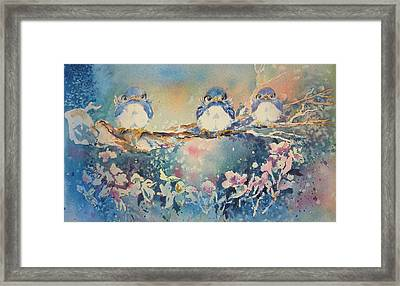 Three Blue Birds Framed Print