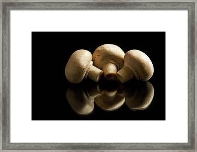 Three Button Mushrooms Backlit Framed Print