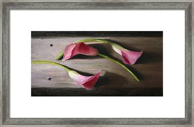 Three Calla Lilies Framed Print by Beth Johnston