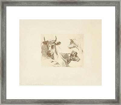 Three Cow Heads, Jean Zacherie Mazel, Hendrik Stokvisch Framed Print by Quint Lox