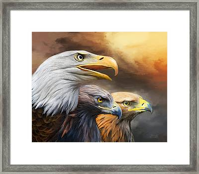 Three Eagles Framed Print by Carol Cavalaris
