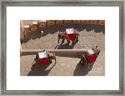 Three Elephants At Amber Fort Framed Print