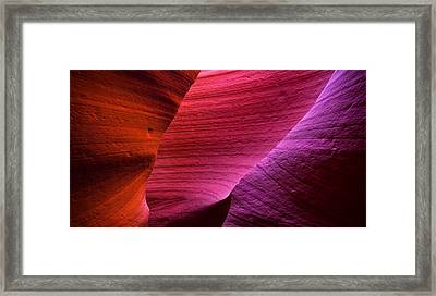 Three Flavors Framed Print