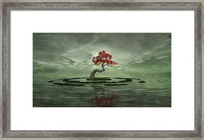 Three For My Heartache Framed Print by Whiskey Monday