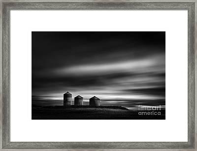 Three Friends Framed Print