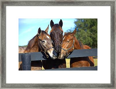Three Friends Framed Print by Gordon Elwell