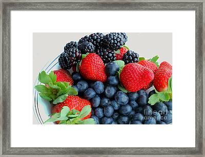 Three Fruit 2 - Strawberries - Blueberries - Blackberries Framed Print by Barbara Griffin