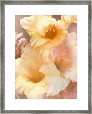 Three Glads Framed Print